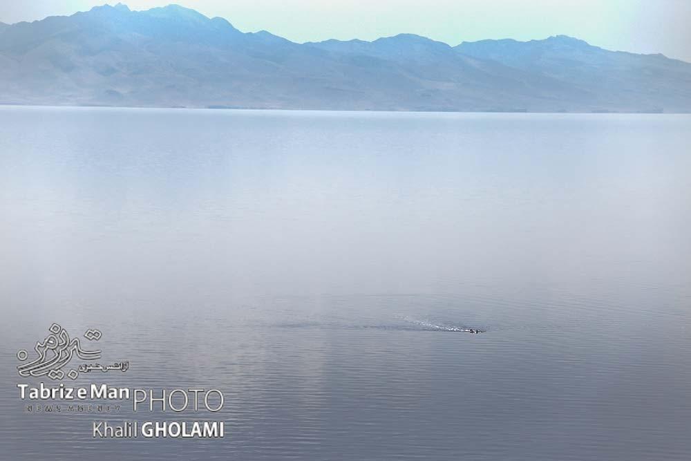 حال و روز دریاچه اورمیه در گرمترین فصل سال