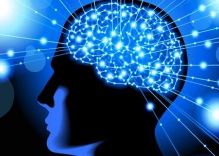 ارتباط چاقی با کاهش انعطاف پذیری مغز