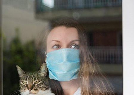 اگر مشکوک به کرونا هستید از حیوانات خانگی فاصله بگیرید