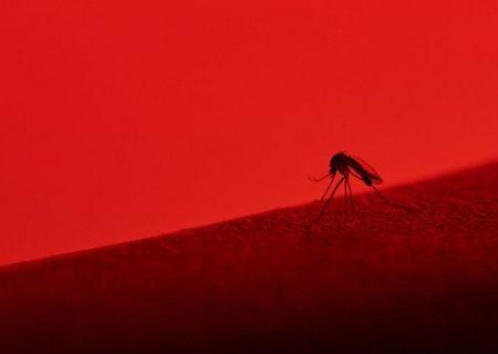 ویروسهایی که ترکیب آنها به بروز سکته منجر میشود
