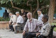 ۵۰ درصد بیماران کرونایی کشور سالمند هستند