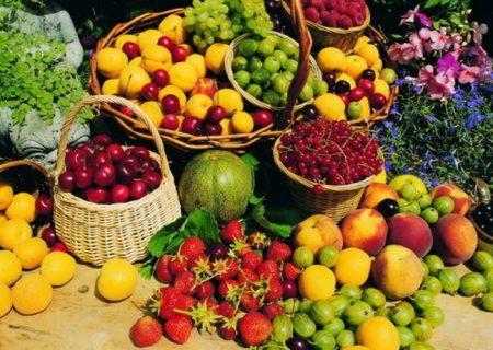 محصولات کشاورزی آذربایجانشرقی به ۵۴ کشور جهان صادر میشود
