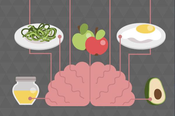 خوراکی های مفید برای تقویت عملکرد مغز