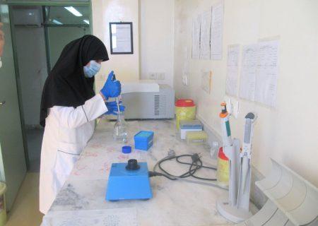 ماهیت دقیق ویروس کرونا در ایران شناسایی شد