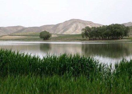 تالابهای آذربایجانشرقی در وضعیت آبی خوبی هستند