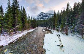 گشت و گذار در جنگل کوهستانی کانادا