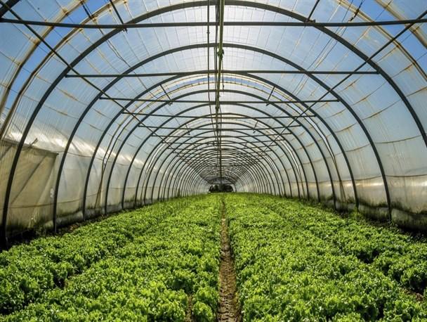 احداث ۱۰ شهرک کشاورزی در آذربایجان شرقی