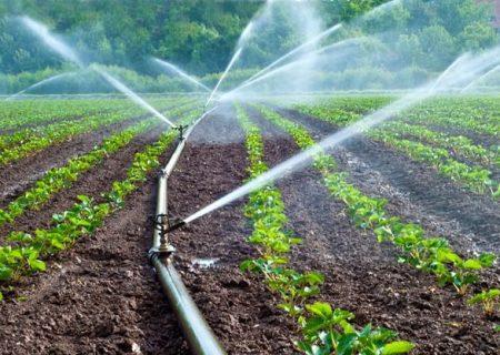 ۶۶ هزار هکتار از اراضی آذربایجانشرقی مجهز به آبیاری تحت فشار است