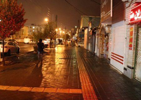 پیاده راه استاد شهریار در شهرک باغمیشه احداث می شود