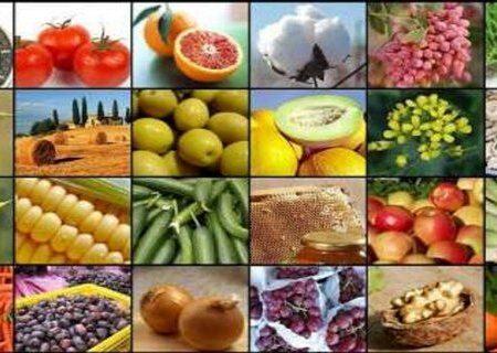 رشد ۳.۴ برابری تولیدات کشاورزی آذربایجانشرقی