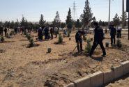 اجرای ۱۲ هکتار گلکاری در شهرکهای صنعتی آذربایجانشرقی