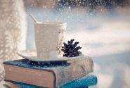 بیش از ۱۰ میلیارد ریال کتاب در طرح زمستانه آذربایجانشرقی فروخته شد