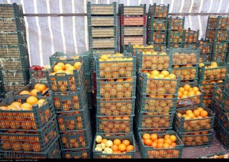 تدبیر برای عرضه مستقیم میوه عید در آذربایجانشرقی