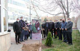 اجرای سنّت حسنه درختکاری در شرکت گاز استان آذربایجان شرقی