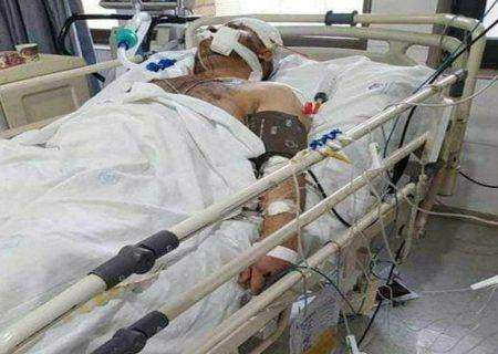 بی تفاوتی شورای شهر تبریز در قبال جان پاکبانان!