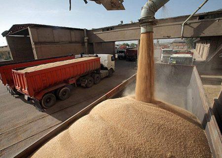 افزایش قیمت خرید تضمینی گندم موجب دلگرمی کشاورزان شده است