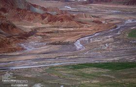 آلاداغ لار؛ تپه های ماهوری با سه رنگ