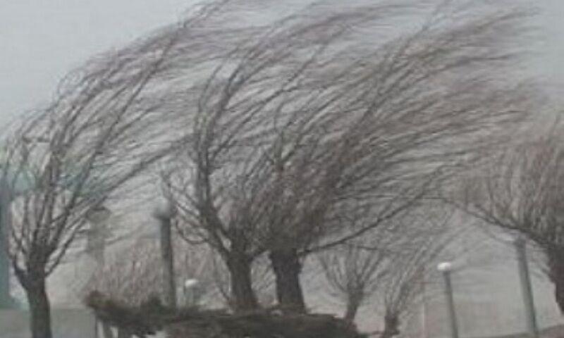 گردباد چندین کارخانه را در شیبلی در هم فرو ریخت+فیلم