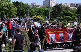 اعتراضات مردمی به سگ کشی در تبریز