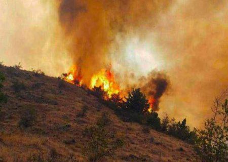 تلاش ۱۰ ساعته برای مهار آتش سوزی جنگلهای ارسباران با حضور فرماندار ورزقان