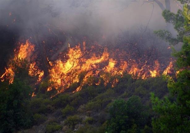 اطفا آتشسوزی منطقه کیامکی/ ۱۰ هکتار از پوشش گیاهی بکر آذربایجانشرقی طعمه حریق شد