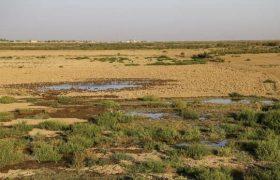 اختصاص ۲۰ هزار میلیارد ریال برای جبران خسارتهای خشکسالی