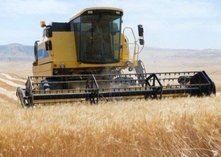خرید تضمینی ۵۳ هزار تن گندم در آذربایجان شرقی