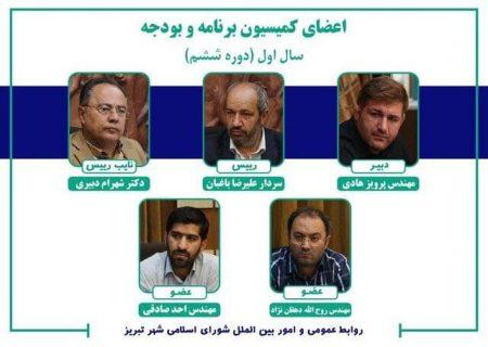 رئیس کمیسیون برنامه و بودجه شورای اسلامی شهر مشخص شد