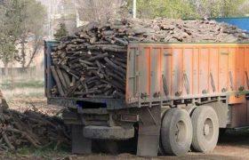 بیش از ۳۸ تن چوب قاچاق در ملکان توقیف شد